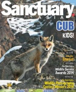 Sanctuary Cub - January 2015