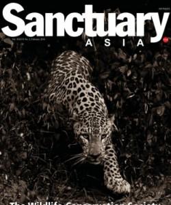 Sanctuary Asia - February 2016