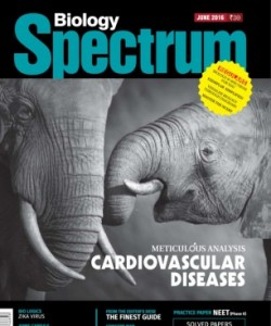 Spectrum Biology