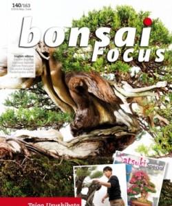 Bonsai Focus EN