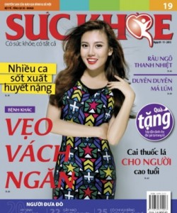 Suc Khoe - Issue 19 - 2013