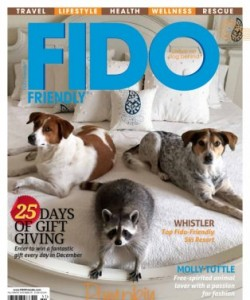 FIDO Friendly