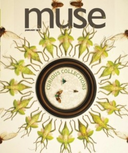 Muse Science Magazine for Kids