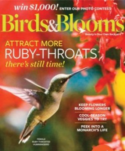 Birds & Bloom